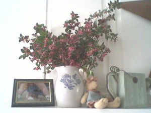 decorating-with-pink-bush