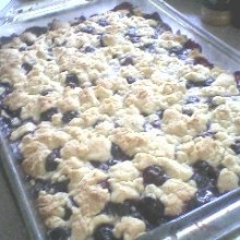 Blueberry Crumb Bars.5