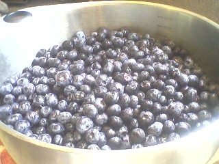 Blueberries.2