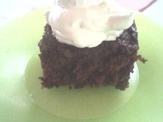Chocolate Zucc Cake