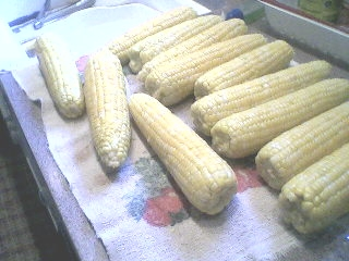 Freezing Corn.6