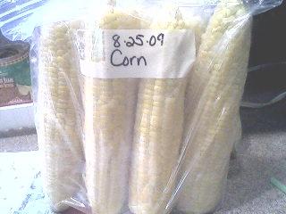 Freezing Corn.7