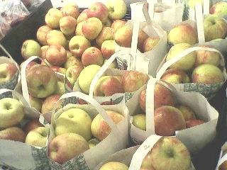 Apples at Garwoods