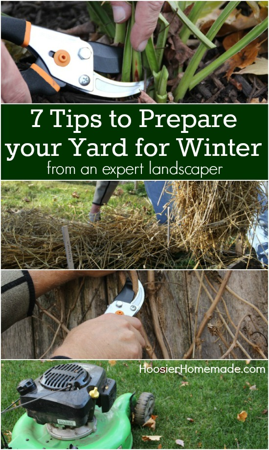 Have the BEST looking yard on the block! These 7 simple tips will help you get your yard ready for Winter! Pin to your Gardening Board!