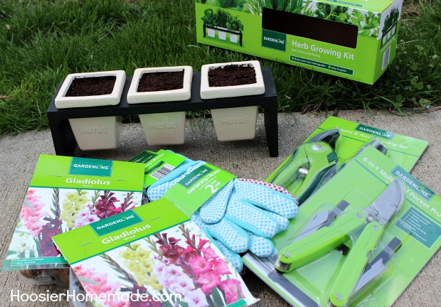 ALDI Herb Garden: Ready for Mom