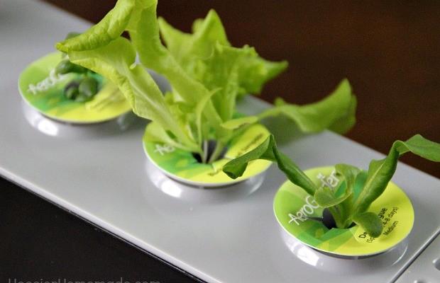 AeroGarden 3SL Indoor Gardening