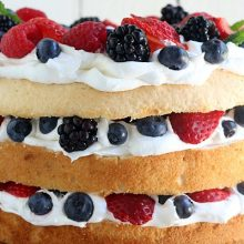 Angel-Food-Cake-with-Berries.FEATURE