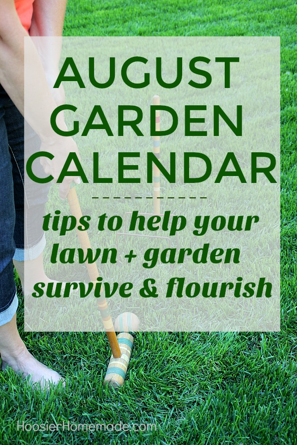 AUGUST GARDEN CALENDAR is packed with chores that will make your lawn and garden survive and flourish during the summer heat that comes along with the summer months. It will also set you up for a beautiful fall.