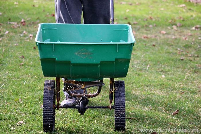 Basics-of-Fertilizing-your-lawn