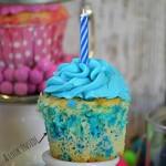 Celebration Cupcakes - January 2014