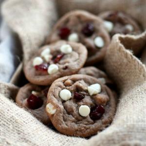 Cranberry Nutella Cookies :: HoosierHomemade.com