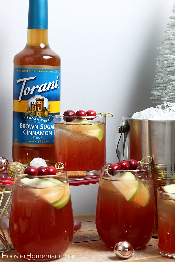 Cranberry Apple Spritzer garnished with apple and cranberries