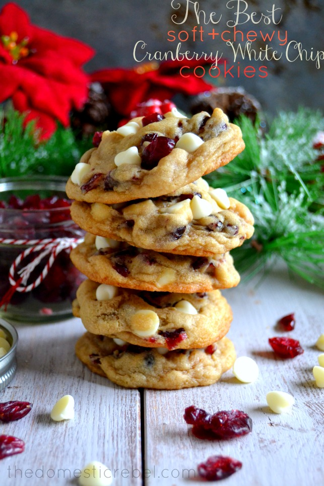 Cranberry White Chocolate Chip Cookies- So good!