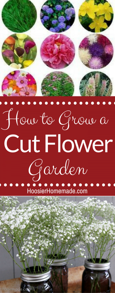 How to Create a Cut Flower Garden