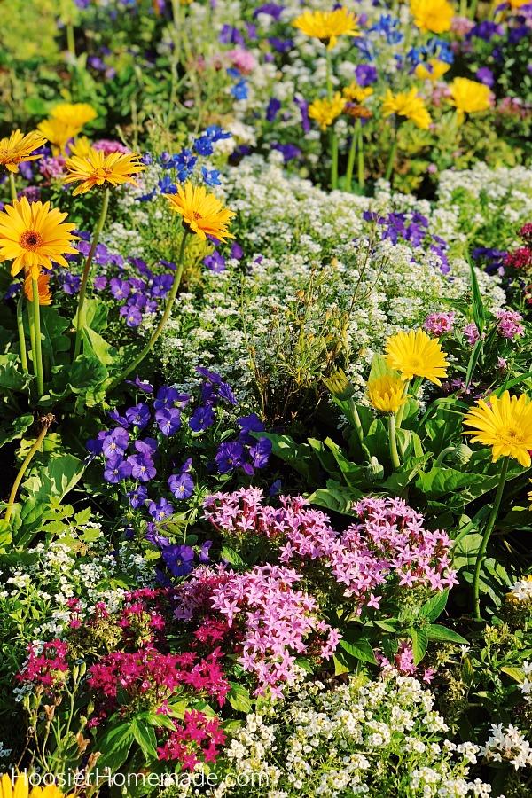 Designing Flower And Garden Beds For Easy Care Hoosier Homemade