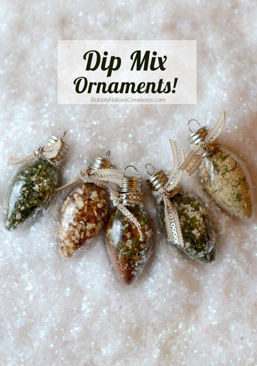 DIY Dip Mix Ornament Gifts