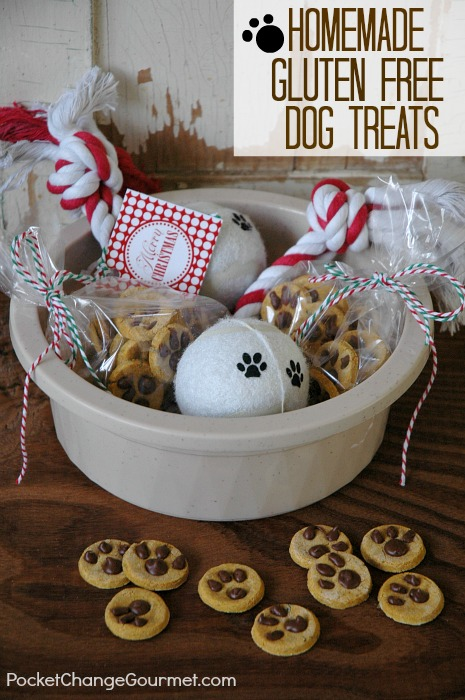 Homemade dog treat gifts 100 days of homemade holiday inspiration gluten free dog treats 100 days of homemade holiday inspiration on hoosierhomemade negle Gallery
