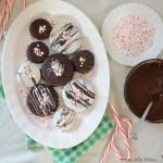 Double Dark Cookies