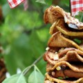 Dried-Apple-Bird-Feeder.1.feature
