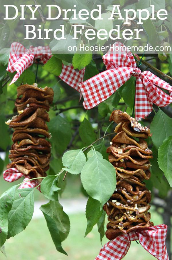 Keep the birds happy and coming back with this DIY Dried Apple Bird Feeder. The kids can help make it too! It has NO PEANUT BUTTER! Click on the Photos for Instructions!