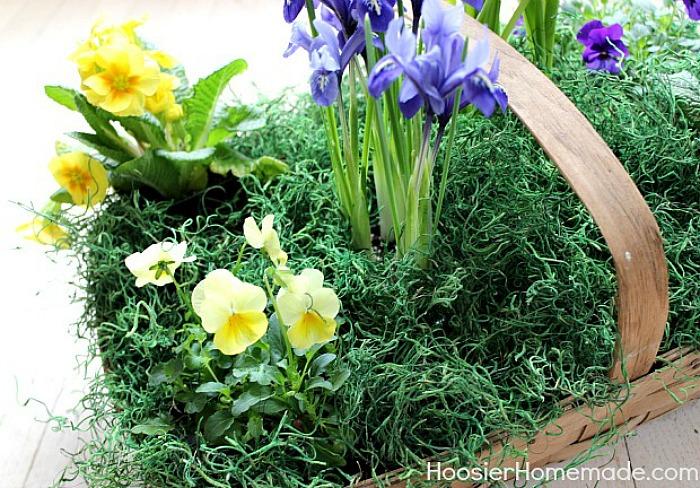 Grass in Easter Flower Basket Centerpiece