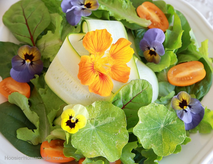 Edible Flower List -- Flowers are gorgeous! BUT did you know that you can EAT some of them? Learn about 7 flowers you can eat AND how to prepare them!