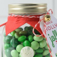 Elf-Mason-Jar-Christmas-Gift.feature
