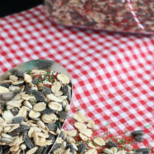 Magical Reindeer Food – 100 Days of Homemade Holiday Inspiration
