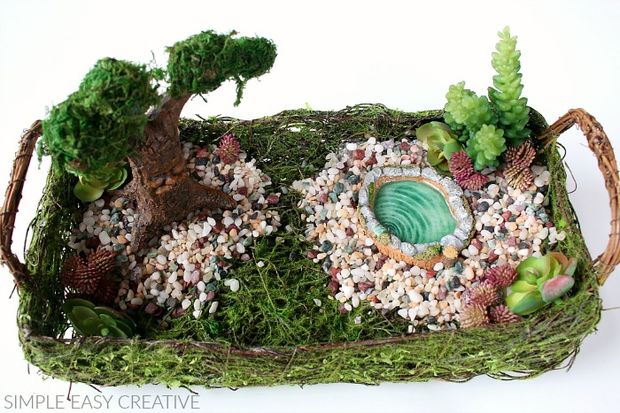 Add succulents to Fairy Garden
