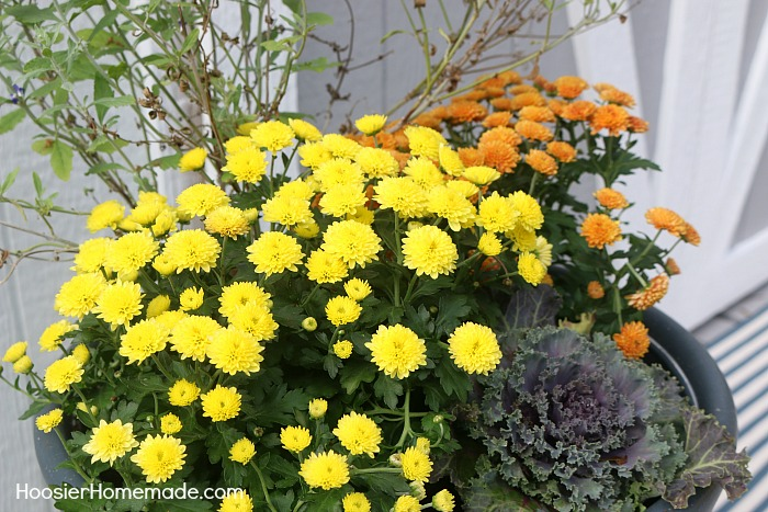 FALL OUTDOOR PLANTER -- Learn how to make this easy Fall planter!