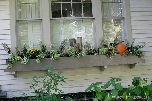 Decorating Fall Window Boxes - Hoosier Homemade