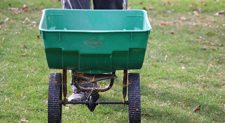 Basics of Fertilizing your Lawn