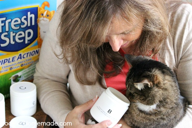 Fresh Step Triple Action Cat Litter gets put to the test. And it's a winner! :: HoosierHomemade.com