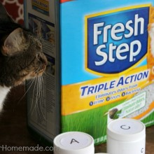 Fresh Step Cat Litter with Triple Action