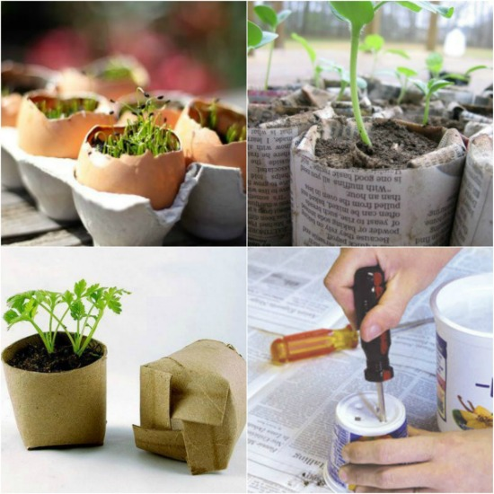 Garden Seed Starters