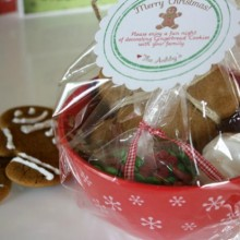 Gingerbread Man Cookie Kit