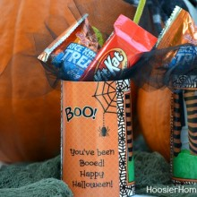 "Halloween Treat ""You've been BOOed"" :: HoosierHomemade.com"