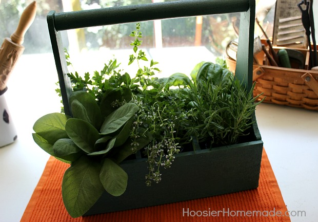 Fresh Herbs displayed in kitchen :: HoosierHomemade.com