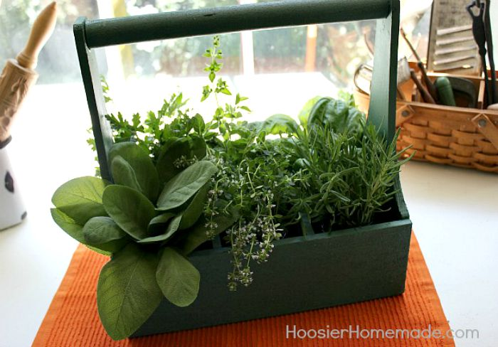 Fresh Herbs in Wooden Carrier