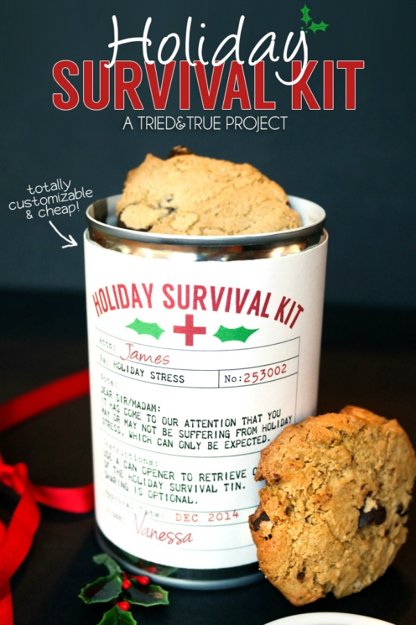 This easy to make Christmas Gift is perfect for teachers, co-workers, neighbors, post man, and more! Visit our 100 Days of Homemade Holiday Inspiration for more recipes, decorating ideas, crafts, homemade gift ideas and much more!