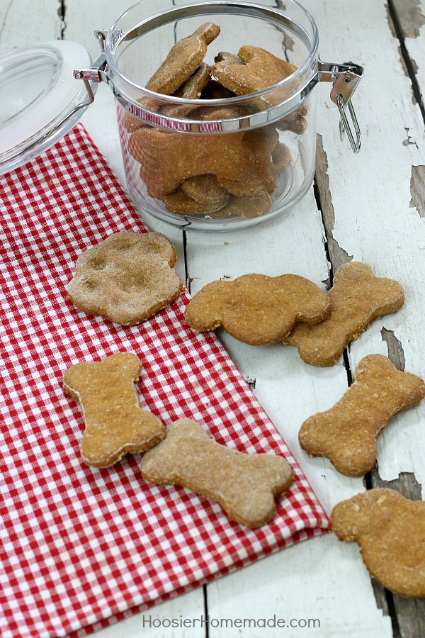HOMEMADE DOG TREATS -- Your dog will LOVE these easy to make homemade dog treats! Filled with good ingredients like pumpkin, peanut butter, oats and more!