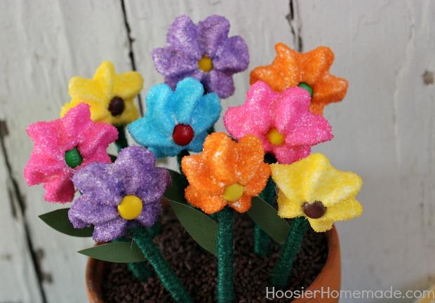 Homemade Marshmallow Flowers