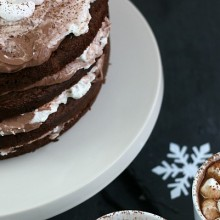 Hot Cocoa Cake.feature
