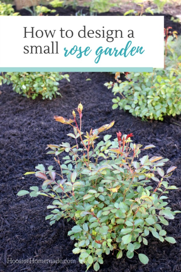 How To Design A Small Rose Garden Hoosier Homemade