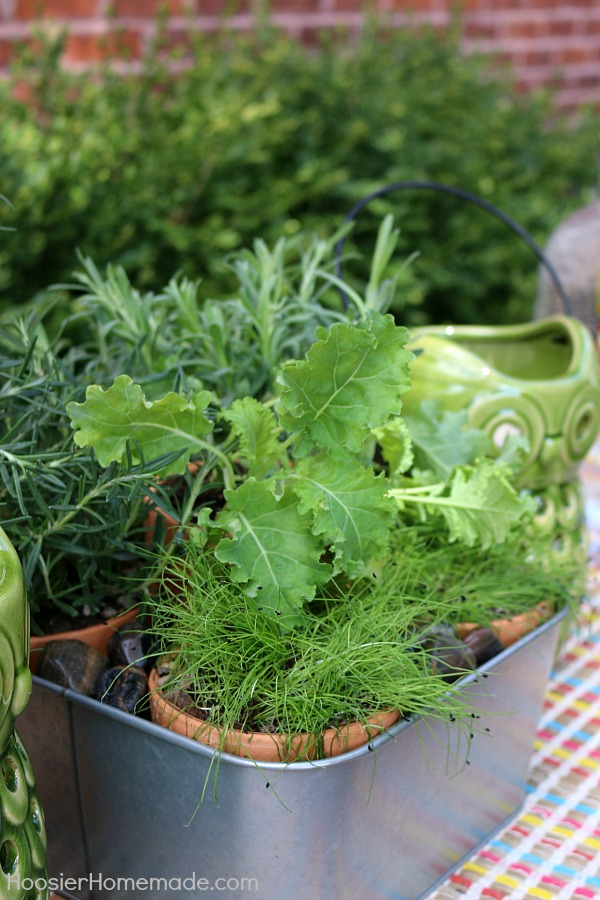 With just a few simple supplies you can create this Indoor Herb Planter. Use it on your table for a centerpiece, then bring it into the kitchen and use the herbs for cooking!