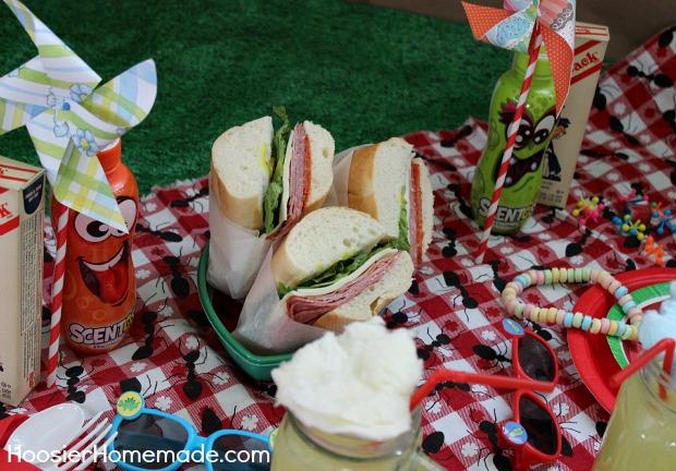 Indoor Picknick winter blues indoor picnic hoosier