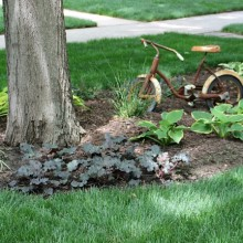 Landscaping 042