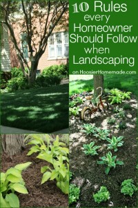 Landscaping Rules