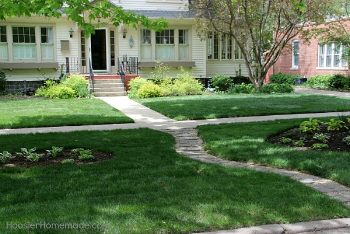 Landscaping-Yard