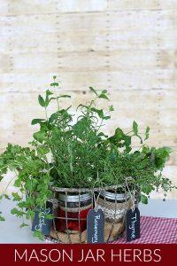 Herbs planted in Mason Jars